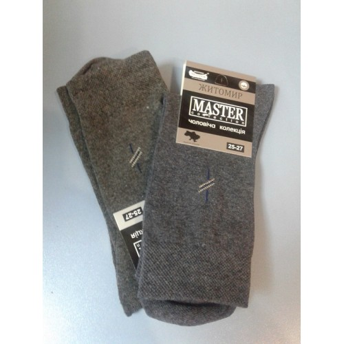 Демисезонные мужские носки Мастер